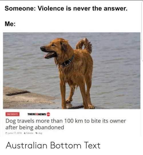 Anaconda, Text, and Never: Someone: Violence is never the answer.  Me:  INCIDENTS  THEREISNEWS  Dog travels more than 100 km to bite its owner  after being abandoned  G junio 17, 2018  Fabiola dog Australian Bottom Text