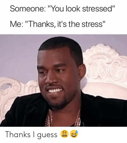 """Guess, Stress, and You: Someone: """"You look stressed""""  Me: """"Thanks, it's the stress"""" Thanks I guess 😩😅"""