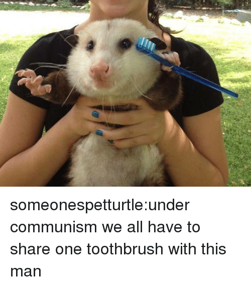 Tumblr, Blog, and Communism: someonespetturtle:under communism we all have to share one toothbrush with this man