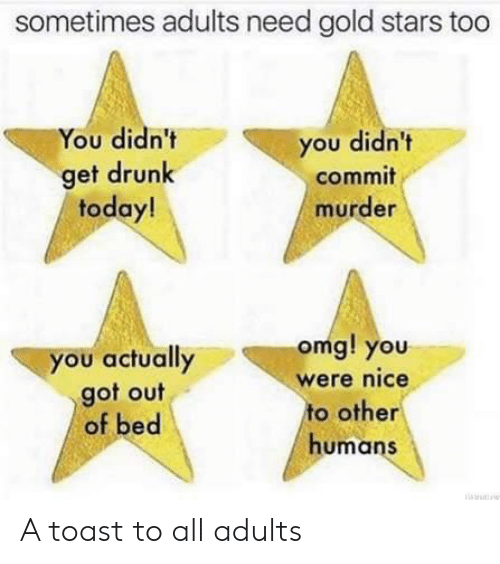 Drunk, Omg, and Stars: sometimes adults need gold stars too  You didn't  you didn't  get drunk  today!  commit  murder  omg! you  you actually  got out  of bed  were nice  to other  humans A toast to all adults