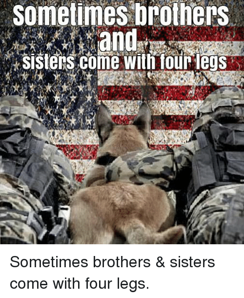 🦅 25+ Best Memes About Brother Sister | Brother Sister Memes
