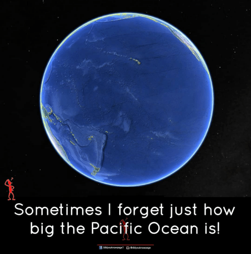 Memes, Ocean, and 🤖: Sometimes I forget just how  big the Pacific Ocean is!