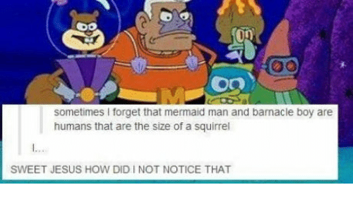mermaid man: sometimes I forget that mermaid man and barnacle boy are  humans that are the size of a squirrel  SWEET JESUS HOW DID I NOT NOTICE THAT