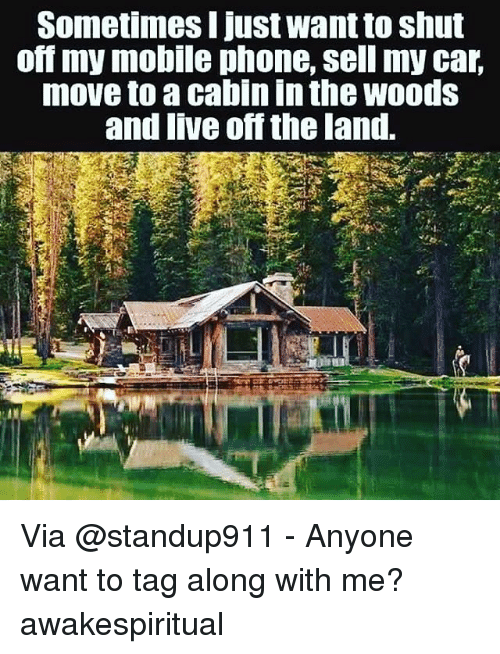 25 best memes about cabin in the woods cabin in the woods memes. Black Bedroom Furniture Sets. Home Design Ideas