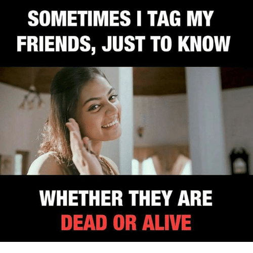 Alive, Dead or Alive, and Friends: SOMETIMES I TAG MY  FRIENDS, JUST TO KNOW  WHETHER THEY ARE  DEAD OR ALIVE