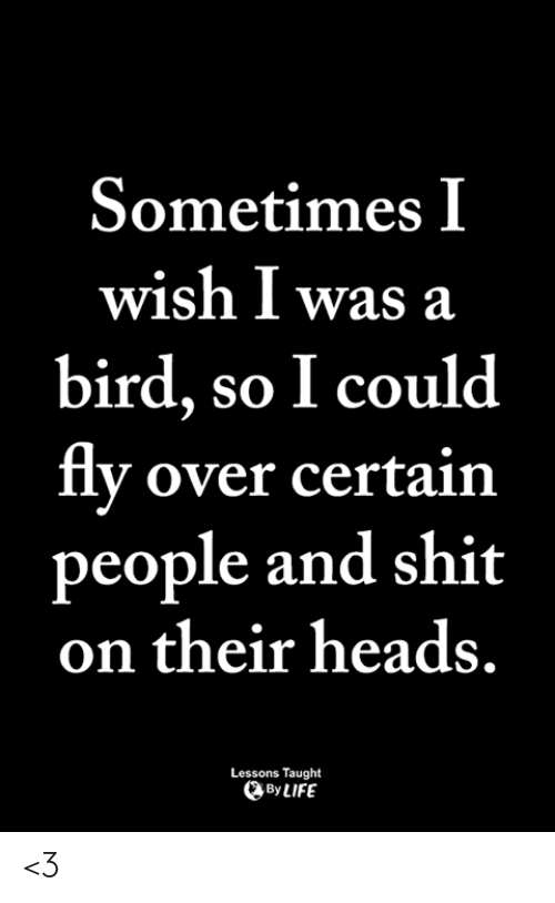 Life, Memes, and Shit: Sometimes I  wish I was a  bird, so I could  flv over certain  people and shit  on their heads.  Lessons Taught  By LIFE <3