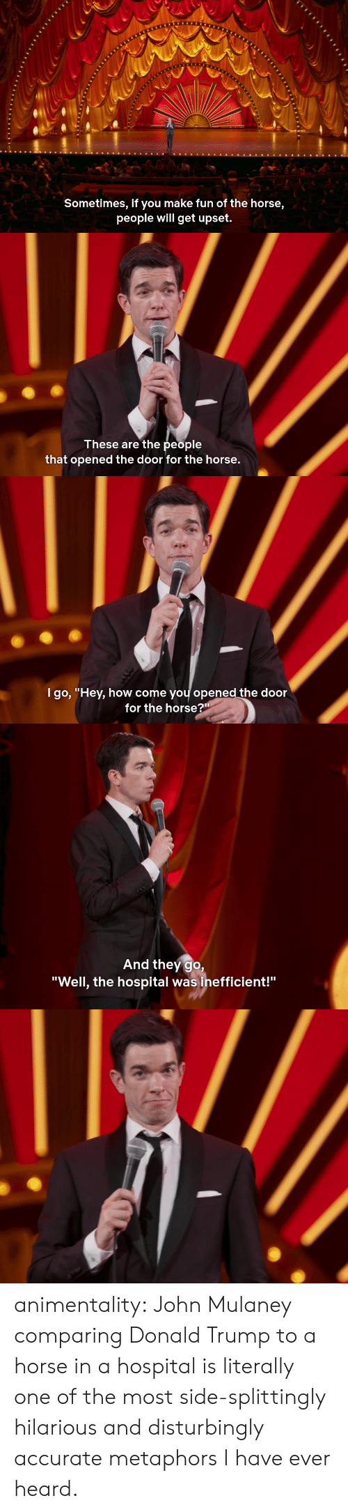 "metaphors: Sometimes, if you make fun of the horse,  people will get upset.   These are the people  that opened the door for the horse.   l go, ""Hev, how come vou opened the door  for the horse?""   And they go,  ""Well, the hospital was inefficient!"" animentality:  John Mulaney comparing Donald Trump to a horse in a hospital is literally one of the most side-splittingly hilarious and disturbingly accurate metaphors I have ever heard."