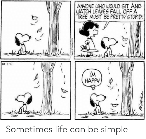 simple: Sometimes life can be simple