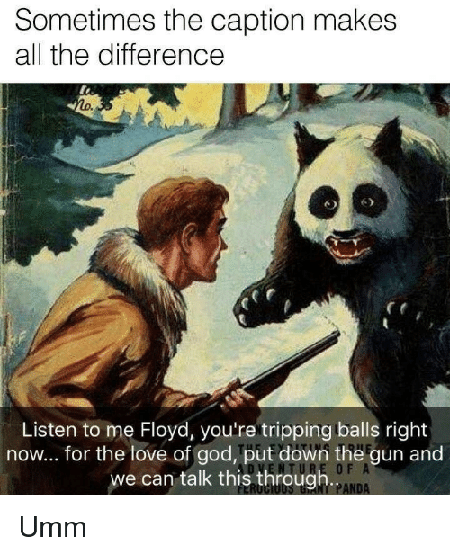 God, Love, and Panda: Sometimes the caption makes  all the difference  Listen to me Floyd, you're tripping balls right  now... for the love of god, put down the gun and  we can talk this through..  0 F  NT PANDA Umm