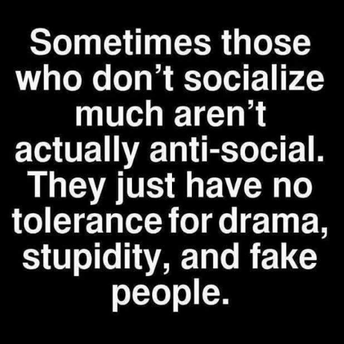 Stupidity: Sometimes those  who don't socialize  much aren't  actually anti-social.  They just have no  tolerance for drama,  stupidity, and fake  people.