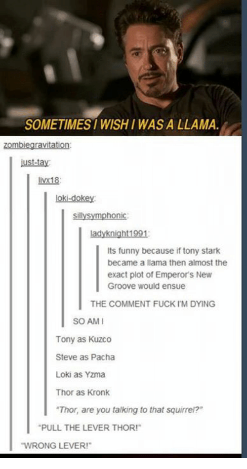 """Emperor's New Groove, Funny, and Kronk: SOMETIMES WISHI WAS A LLAMA  zombiegravitation  ust-tay  livx18  loki-dokey  sillysymphonic  ladyknight1991  Its funny because if tony stark  became a llama then almost the  exact plot of Emperor's New  Groove would ensue  THE COMMENT FUCK IM DYING  SO AMI  Tony as Kuzco  Steve as Pacha  Loki as Yzma  Thor as Kronk  """"Thor, are you talking to that squirrei?  PULL THE LEVER THOR!""""  WRONG LEVER!"""