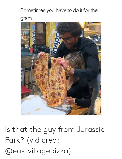Jurassic Park, Girl Memes, and Jurassic: Sometimes you have to do it for the  gram Is that the guy from Jurassic Park? (vid cred: @eastvillagepizza)