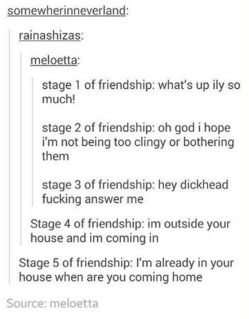 Fucking, God, and Home: somewherinneverland:  rainashizas:  meloetta:  stage 1 of friendship: what's up ily so  much!  stage 2 of friendship: oh god i hope  i'm not being too clingy or bothering  them  stage 3 of friendship: hey dickhead  fucking answer me  Stage 4 of friendship: im outside your  house and im coming in  Stage 5 of friendship: I'm already in your  house when are you coming home  Source: meloetta