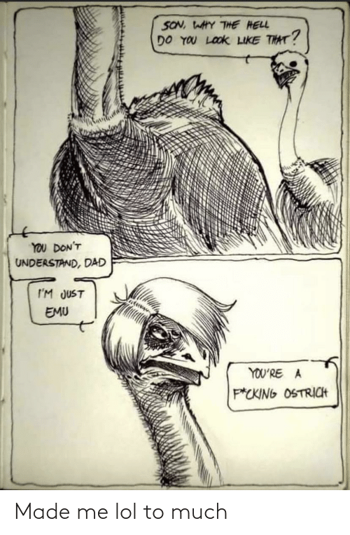 much: SON, WAHY THE HELL  DO YOU LOOK LIKE THAT?  YOU DON'T  UNDERSTAND, DAD  I'M JUST  EMU  YOU'RE A  P*CKING OSTRICH Made me lol to much