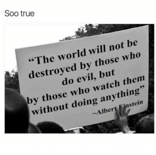 "Albert Einstein, True, and Einstein: Soo true  ""The world will not be  destroved by those who  do evil, but  by those who watch thenm  without doing anything  Albert Einstein"