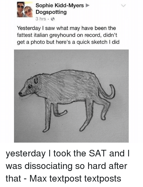 Memes, Saw, and Record: Sophie Kidd-Myers  Dogspotting  3 hrs.  Yesterday saw what may have been the  fattest italian greyhound on record, didn't  get a photo but here's a quick sketch I did yesterday I took the SAT and I was dissociating so hard after that - Max textpost textposts