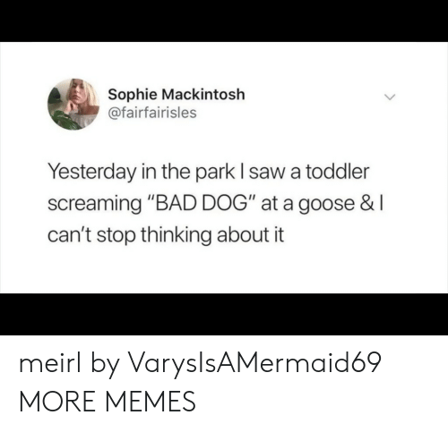 """Bad, Dank, and Memes: Sophie Mackintosh  @fairfairisles  Yesterday in the park I saw a toddler  screaming """"BAD DOG"""" at a goose &I  can't stop thinking about it meirl by VarysIsAMermaid69 MORE MEMES"""