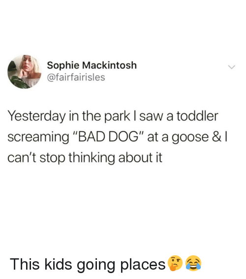 "Bad, Funny, and Saw: Sophie Mackintosh  @fairfairisles  Yesterday in the park l saw a toddler  screaming ""BAD DOG"" at a goose & l  can't stop thinking about it This kids going places🤔😂"