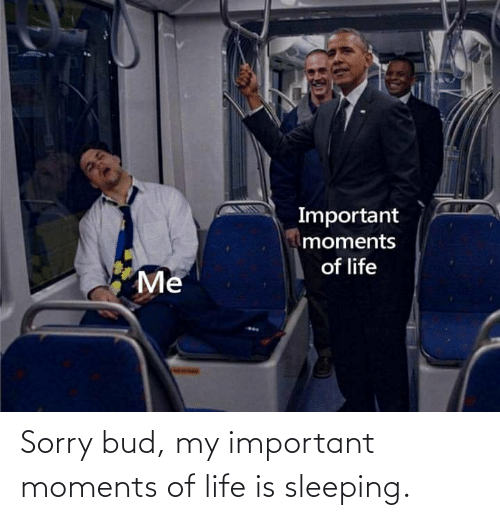 Life: Sorry bud, my important moments of life is sleeping.