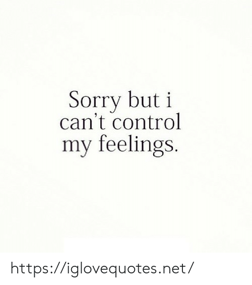 Sorry, Control, and Net: Sorry but i  can't control  my feelings. https://iglovequotes.net/