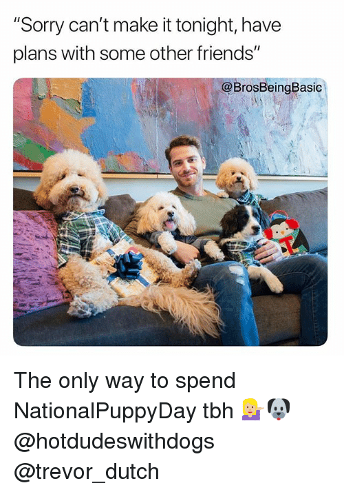 """Friends, Sorry, and Tbh: """"Sorry can't make it tonight, have  plans with some other friends'""""  @BrosBeingBasic The only way to spend NationalPuppyDay tbh 💁🏼🐶 @hotdudeswithdogs @trevor_dutch"""
