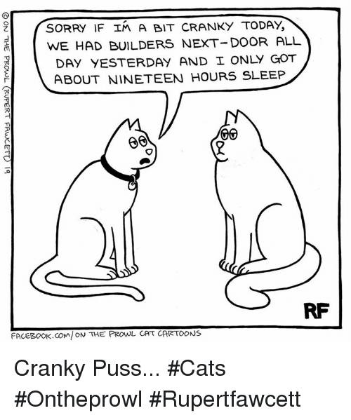 Pussing: SORRY IF In A BIT cRANKY TODAY  WE HAD BUILDERS NEXT-DOOR ALL  DAY YESTERDAY AND I ONLY GOT  ABOUT NINETEEN HOURS SLEEP  VIV  RF  FACEBOOK COM ON THE PROwL CAT CARTOONS Cranky Puss... #Cats #Ontheprowl #Rupertfawcett