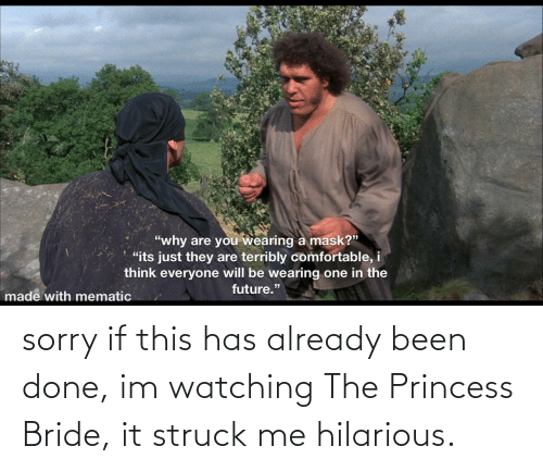 Has: sorry if this has already been done, im watching The Princess Bride, it struck me hilarious.