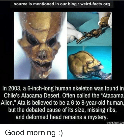 """Skeletone: source is mentioned in our blog weird-facts.org  In 2003, a 6-inch-long human skeleton was found in  Chile's Atacama Desert. Often called the """"Atacama  Alien,"""" Ata is believed to be a 6 to 8-year-old human,  but the debated cause of its size, missing ribs,  and deformed head remains a mystery  weird-tacts or Good morning :)"""