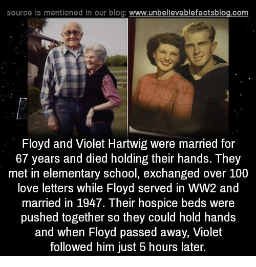 Memes, Blog, and Elementary: source Is mentioned In our blog  www.unbelievablefactsblog.com  Floyd and Violet Hartwig were married for  67 years and died holding their hands. They  met in elementary school, exchanged over 100  love letters while Floyd served in WW2 and  married in 1947. Their hospice beds were  pushed together so they could hold hands  and when Floyd passed away, Violet  followed him just 5 hours later.