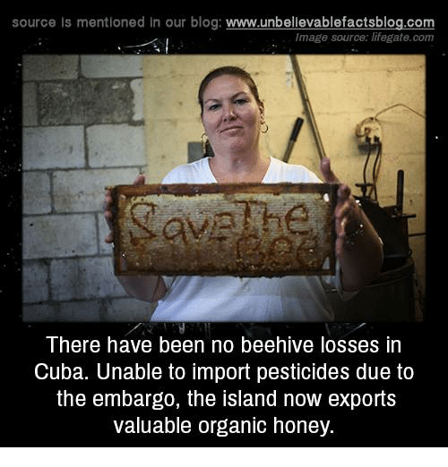 Memes, Blog, and Cuba: source Is mentioned In our blog  www.unbelievablefactsblog.com  Image source: lifegate.com  There have been no beehive losses in  Cuba. Unable to import pesticides due to  the embargo, the island now exports  valuable organic honey.