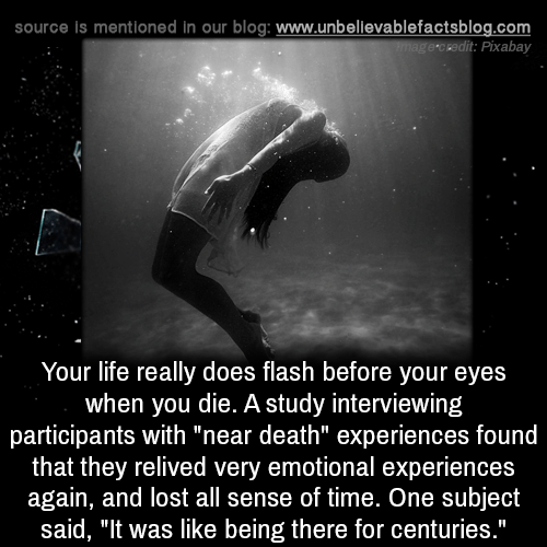 "Life, Memes, and Lost: source is mentioned in our blog: www.unbellevablefactsblog.com  e ckedit: Pixabay  Your life really does flash before your eyes  when you die. A study interviewing  participants with ""near death"" experiences found  that they relived very emotional experiences  again, and lost all sense of time. One subject  said, ""It was like being there for centuries."""