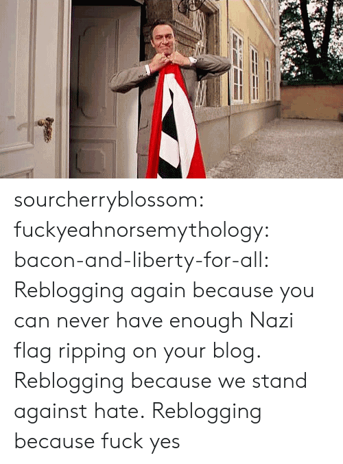 ripping: sourcherryblossom:  fuckyeahnorsemythology:  bacon-and-liberty-for-all:  Reblogging again because you can never have enough Nazi flag ripping on your blog.  Reblogging because we stand against hate.  Reblogging because fuck yes
