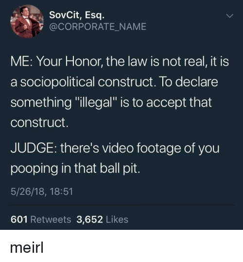 "Video, MeIRL, and Corporate: SovCit, Esq  @CORPORATE_NAME  ME: Your Honor, the law is not real, it is  a sociopolitical construct. To declare  something ""illegal"" is to accept that  construct.  JUDGE: there's video footage of you  pooping in that ball pit  5/26/18, 18:51  601 Retweets 3,652 Likes meirl"