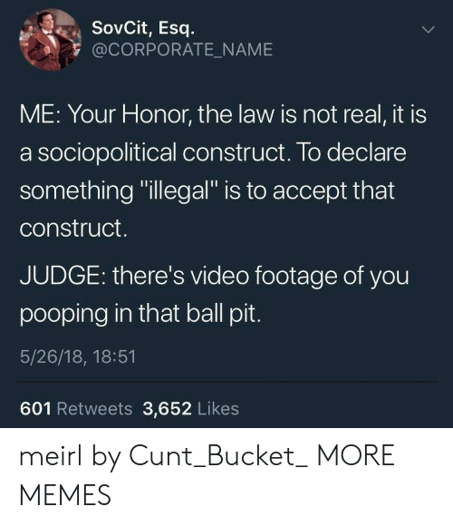 "Dank, Memes, and Target: SovCit, Esq  @CORPORATE_NAME  ME: Your Honor, the law is not real, it is  a sociopolitical construct. To declare  something ""illegal"" is to accept that  construct.  JUDGE: there's video footage of you  pooping in that ball pit  5/26/18, 18:51  601 Retweets 3,652 Likes meirl by Cunt_Bucket_ MORE MEMES"