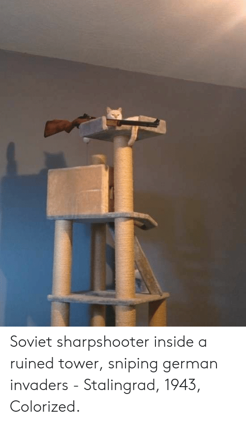 Soviet, Stalingrad, and German: Soviet sharpshooter inside a ruined tower, sniping german invaders - Stalingrad, 1943, Colorized.