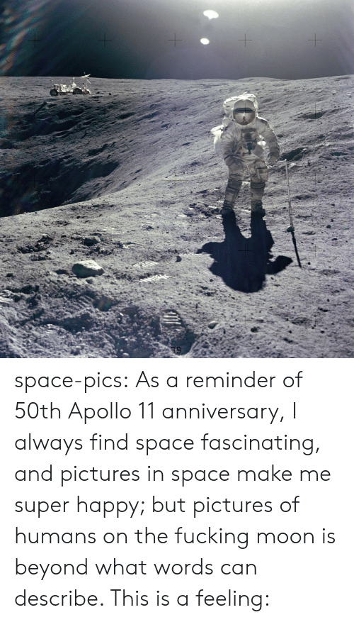 Fucking, Tumblr, and Apollo: space-pics:  As a reminder of 50th Apollo 11 anniversary, I always find space fascinating, and pictures in space make me super happy; but pictures of humans on the fucking moon is beyond what words can describe. This is a feeling: