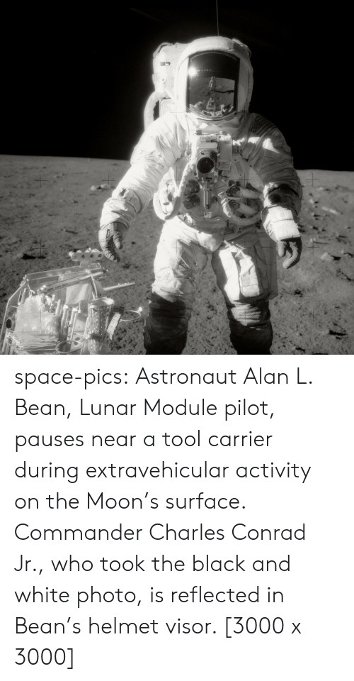 module: space-pics:  Astronaut Alan L. Bean, Lunar Module pilot, pauses near a tool carrier during extravehicular activity on the Moon's surface. Commander Charles Conrad Jr., who took the black and white photo, is reflected in Bean's helmet visor. [3000 x 3000]