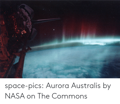 Space: space-pics:  Aurora Australis by NASA on The Commons