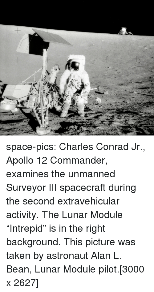 """module: space-pics:  Charles Conrad Jr., Apollo 12 Commander, examines the unmanned Surveyor III spacecraft during the second extravehicular activity. The Lunar Module """"Intrepid"""" is in the right background. This picture was taken by astronaut Alan L. Bean, Lunar Module pilot.[3000 x 2627]"""
