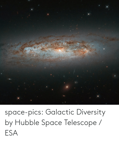 Space: space-pics:  Galactic Diversity by Hubble Space Telescope / ESA