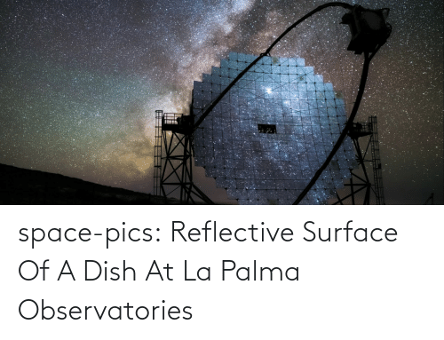 pics: space-pics:  Reflective Surface Of A Dish At La Palma Observatories