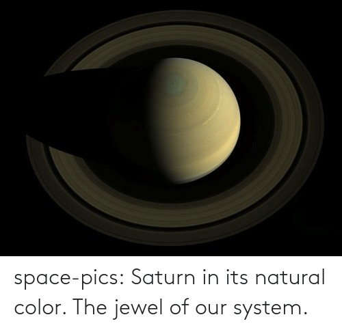 natural: space-pics:  Saturn in its natural color. The jewel of our system.