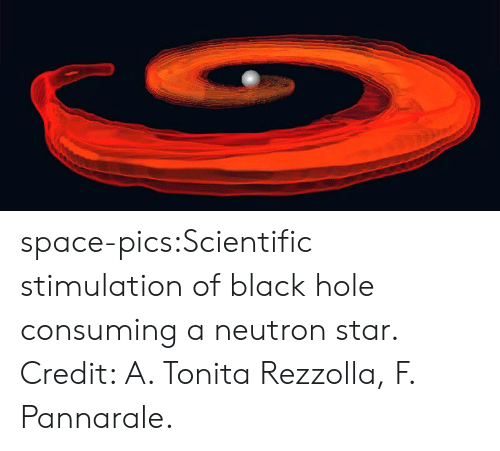 Tumblr, Black, and Blog: space-pics:Scientific stimulation of black hole consuming a neutron star. Credit: A. Tonita Rezzolla, F. Pannarale.