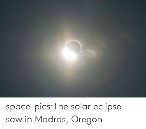 Saw, Tumblr, and Blog: space-pics:The solar eclipse I saw in Madras, Oregon
