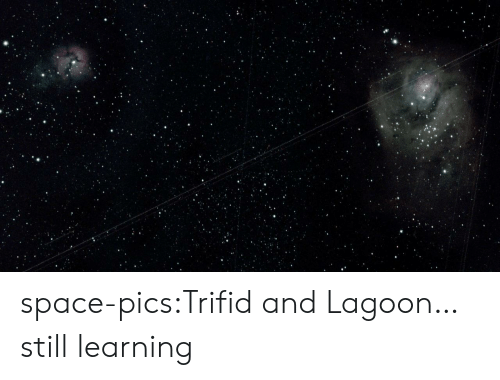 lagoon: space-pics:Trifid and Lagoon… still learning