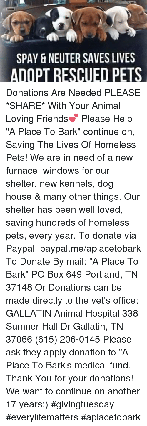 """Boxing, Homeless, and Memes: SPAY & NEUTER SAVES LIVES  ADOPT RESCUED PETS Donations Are Needed PLEASE *SHARE* With Your Animal Loving Friends💕  Please Help """"A Place To Bark"""" continue on,  Saving The Lives Of Homeless Pets!   We are in need of a new furnace, windows for our shelter, new kennels, dog house & many other things.  Our shelter has been well loved, saving hundreds of homeless pets, every year.  To donate via Paypal: paypal.me/aplacetobark To Donate By mail:  """"A Place To Bark"""" PO Box 649 Portland, TN 37148 Or Donations can be made directly to the vet's office: GALLATIN Animal Hospital 338 Sumner Hall Dr Gallatin, TN  37066 (615) 206-0145 Please ask they apply donation to """"A Place To Bark's medical fund.  Thank You for your donations!  We want to continue on another 17 years:) #givingtuesday #everylifematters #aplacetobark"""