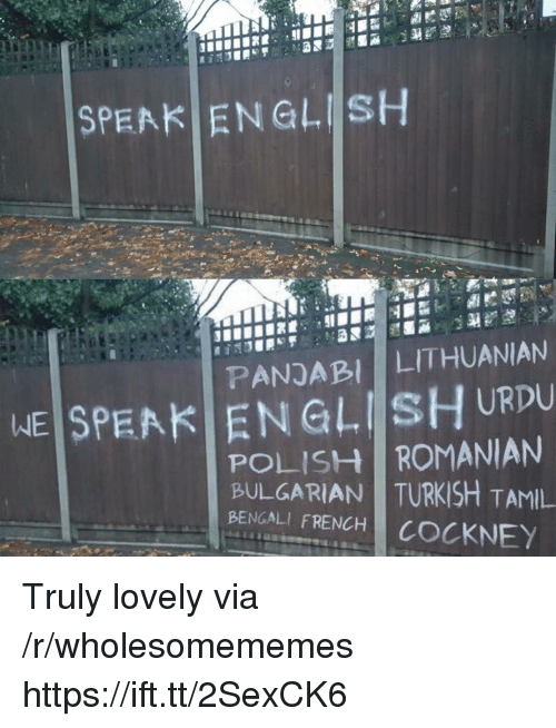 Bengali, English, and French: SPEAK ENGLISH  PANDABI LITHUANIAN  WEİSPEAKI EN GLIİsHURDU  POLISH ROMANIAN  BULGARIAN TURKISH TAMIL  BENGALI FRENCH COCKNEY Truly lovely via /r/wholesomememes https://ift.tt/2SexCK6