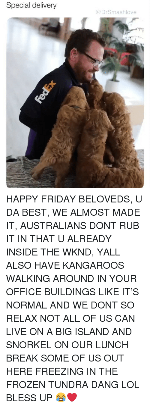 Bless Up, Friday, and Frozen: Special delivery  @DrSmashlove HAPPY FRIDAY BELOVEDS, U DA BEST, WE ALMOST MADE IT, AUSTRALIANS DONT RUB IT IN THAT U ALREADY INSIDE THE WKND, YALL ALSO HAVE KANGAROOS WALKING AROUND IN YOUR OFFICE BUILDINGS LIKE IT'S NORMAL AND WE DONT SO RELAX NOT ALL OF US CAN LIVE ON A BIG ISLAND AND SNORKEL ON OUR LUNCH BREAK SOME OF US OUT HERE FREEZING IN THE FROZEN TUNDRA DANG LOL BLESS UP 😂❤️