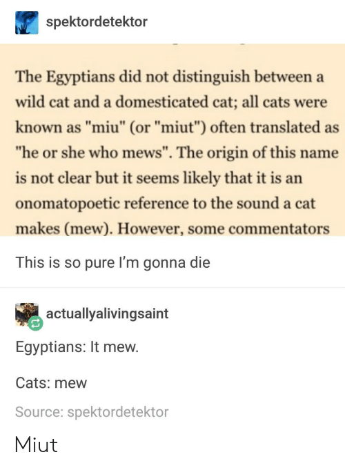 """Commentators: spektordetektor  The Egyptians did not distinguish between a  wild cat and a domesticated cat; all cats were  known as """"miu"""" (or """"miut"""") often translated as  he or she who mews"""". The origin of this name  is not clear but it seems likely that it is an  onomatopoetic reference to the sound a cat  makes (mew). However, some commentators  This is so pure I'm gonna die  actuallyalivingsaint  Egyptians: It mew  Cats: mew  Source: spektordetektor Miut"""