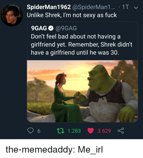 Sexy As Fuck: SpiderMan1962 @SpiderMan1. 1T  Unlike Shrek, I'm not sexy as fuck  9GAG @9GAG  Don't feel bad about not having a  girlfriend yet. Remember, Shrek didn't  have a girlfriend until he was 30.  6 п 1.283 3.629 ç the-memedaddy:  Me_irl